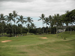WAIKELE COUNTRY CLUB 170