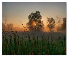 Lightshine (PT Photo) Tags: sunrise colorado hdr vertorama dphdr ptphoto pse8 cottonwoodswa