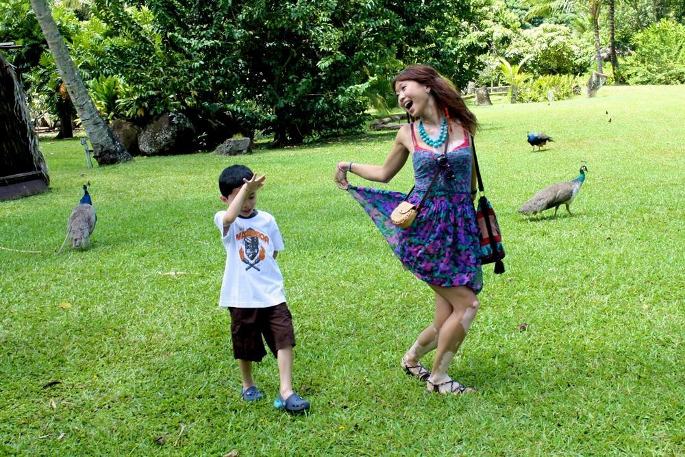 Kauai / Island Hop