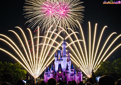 Walt Disney World Wishes! Photo