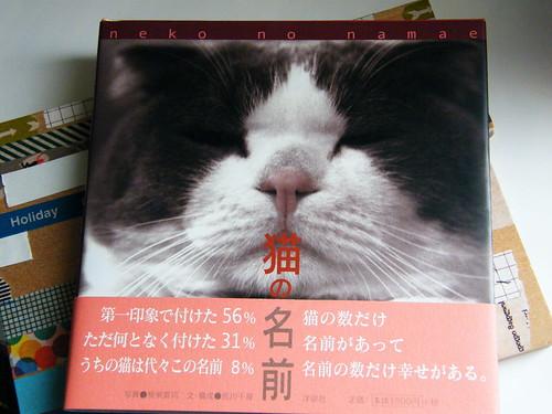 猫の名前-2