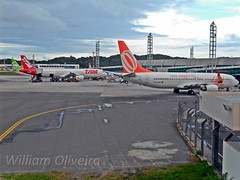 Aeroporto de Salvador (William Oliveira.) Tags: linhas plane de airplane airport photographer aircraft aviation airplanes young aeroporto brasilien patio planes airbus salvador boeing airlines flugzeug avin aeropuerto tam aereo brasile gol aviao ssa aviones brsil  a321 aviacin 737800  luftfahrt avies aereas    aviacao youngphotographers laviation aeronaves  webjet  dzlem sbsv   airplane plan