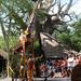 Parade at Disney's Animal Kingdom