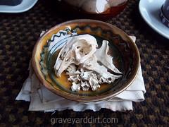 Casa dels Ossos (House of Bones) IV (Ms. Graveyard Dirt) Tags: altar bone roadkill rabbits backroom