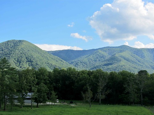 The Smokies @ Cades Cove I