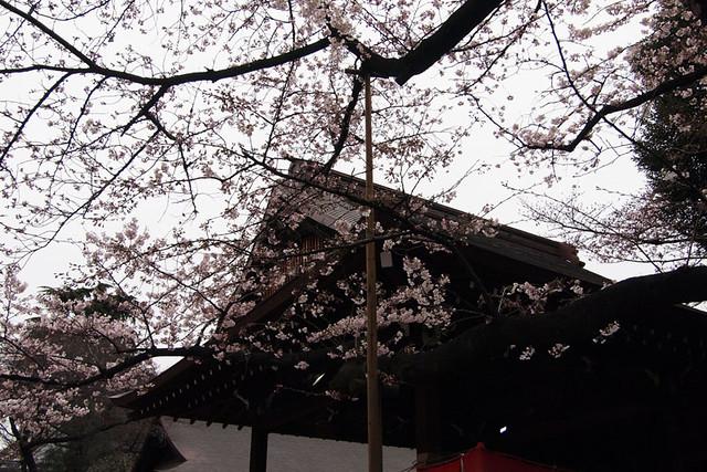 110403_120126_靖国神社