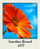 Sunshine_Award_2011