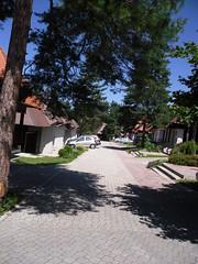 SDC13695 (vale 83) Tags: serbia samsung zlatibor pl65