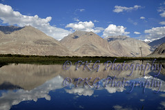Nubra Valley (PKG Photography) Tags: scale danger freedom control altitude fear joy happiness security safety growth attitude desire fantasy journey hero learning shock motivation strength heroes spirituality care comfort excitement endurance discovery leh buddism buddist challenge enjoyment zone courage determination confidence skill aspirations expertise effortless conquering ladhak colddesert pkgphotography gettyimagesindiaq3 ladhakwallpapers
