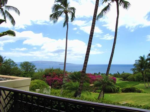 Maui Chiaki 394b