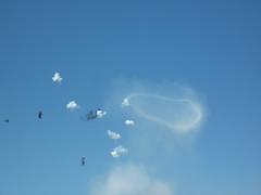 Vortex (pukkagen) Tags: sussex airshow messerschmitt antiaircraft ringvortex