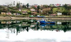 Calbuco (Andres Amengual) Tags: chile muelle mar gaviotas detalles bote pescadores caleta calbuco décimaregión