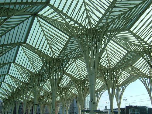 Arrivals & Departures by margarida belchior