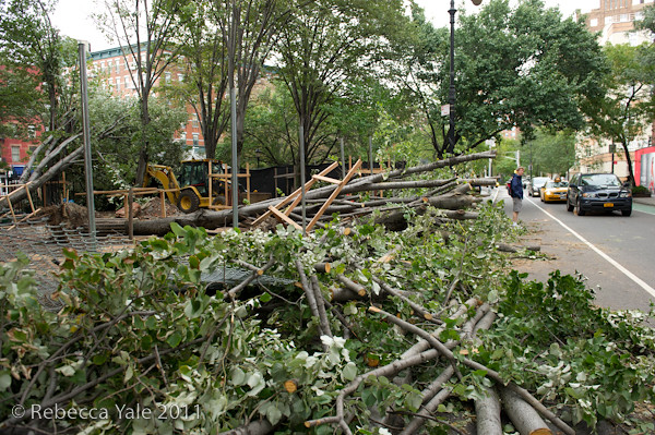 RYALE_Hurricane_Irene_Aftermath_NYC-9