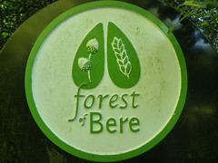 Forest of Bere (Worthing Wanderer) Tags: sussex path border emsworth forestofbere