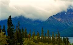 Alaska - Klondike Highway - Landscape