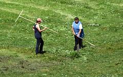 Making Hay while the Sun Shines (saxonfenken) Tags: two people field austria working tyrol 6925 pregamewinner day3austria 6925people