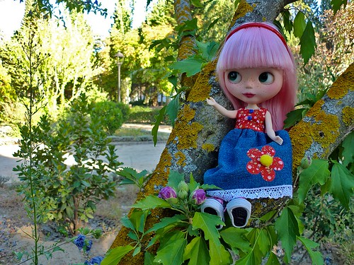Aprilia, the Tree Girl.