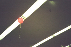 39_212852010012 (jakesburg) Tags: lighting red losangeles lomo lca stuck kodak interior balloon grain supermarket ceiling fluorescent portra available