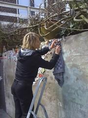 Caroline (de Muur van Geluk) Tags: denbosch shertogenbosch muur scherven geluk demuurvangeluk mozaiek