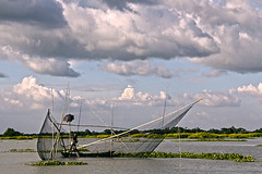 Fishing at Arial Bill (*HamimCHOWDHURY* [Only Posting photos ]) Tags: life red portrait blackandwhite white black net nature canon eos bill fishing colorful faces sony surreal hora dhaka vaio rgb bangladesh gettyimages arial dlsr greenblue internationalairport proposed shallowwater 60d incrediblebengal 595036 framebangladesh gettyimagesbangladeshq2 lakesrinagor waterswam