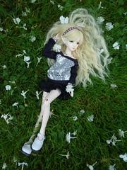 Field of flowers 2 (Windymoon2) Tags: bjd mei rs rin bbb msd balljointeddoll bobobie resinsoul