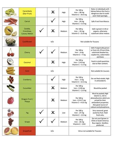 Parrotlet Food Diet