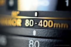 nikon dx guestpost iso1000 lensreview d7000 nikonrumors 11reproductionratio afsmicronikkor40mmf28g newnikon40mmmacrolens