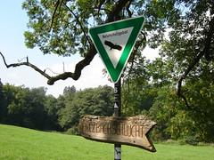 Naturschutzgebiet Holzbachschlucht