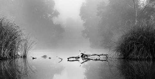 Río entre tinieblas by Ezequiel Pallarés