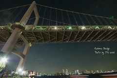 Rainbow_Bridge_2 (7th_wood) Tags: bridge tokyo     sigma1020mmf456exdc nikond80