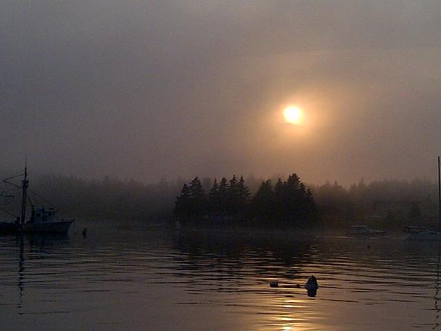 Mist in Maine