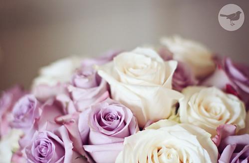 Lou & Shaina Wedding 1210