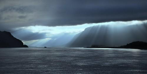 Curtain of Light by Darrell Wyatt