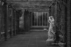 Winter garden (Spectra Colours Photography) Tags: newzealand bw statue auckland wintergarden jameswu yahoo:yourpictures=sculptures yahoo:yourpictures=hiddencityplaces spectracolours james458