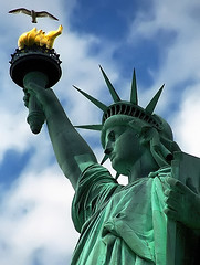 "New York - Liberty Island ""Statue of Liberty & Seagull"" (David Paul Ohmer) Tags: new york city statue liberty island freedom harbor seagull free torch statueofliberty of"