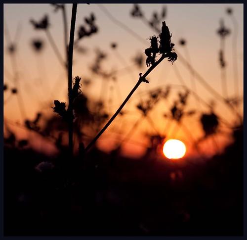 Ondergaande zon by hans van egdom