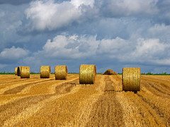 Shades of late August (RainerSchuetz) Tags: field clouds harvest stubblefield baleofstraw bestofblinkwinners