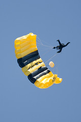Golden Knights Photo