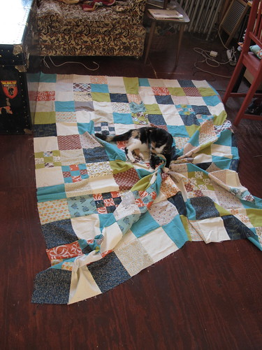 ozzy and the quilt