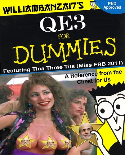 QE3 FOR DUMMIES by Colonel Flick