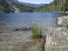 Swimming spot (Jrk3) Tags: dorothylake alpinelakeswilderness wahiking
