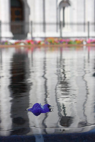 Floating Flower SLC Temple 2011