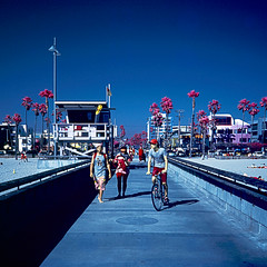 color infrared. venice beach, ca. 2011. (eyetwist) Tags: ocean california blue venice bw 6 color 120 6x6 mamiya film beach water bike bicycle analog mediumformat square ir la vanishingpoint losangeles los sand waves cyclist pacific angeles kodak hipster magenta slide ishootfilm symmetry palmtrees socal filter chrome transparency infrared venicebeach analogue mamiya6 ektachrome e6 colorinfrared ai westla schneider emulsion falsecolor eir 099 primes angeleno venicepier colorir eyetwist 6mf aerochrome mamiya6mf ishootkodak epsonv750pro aicolor recentlyprocessedfilm aihollywood filmexif filmtagger eyetwistkevinballuff transparencye6 kodakaerochromecolorinfraredeir