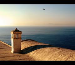 Dicono i poeti che la disperazione ha sempre nella bocca un sorriso. (Giuseppe Suaria) Tags: sunset sea panorama capri tramonto mare tetto seagull roo gabbiano costiera amalfitana blinkagain bestofblinkwinners