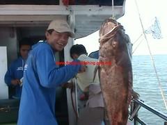201003014 (fymac@live.com) Tags: mackerel fishing redsnapper shimano pancing angling daiwa tenggiri sarawaktourism sarawakfishing malaysiafishing borneotour malaysiaangling jiggingmaster