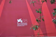 68° Mostra (Amore & Psiche) Tags: venezia lido leonealato 68°mostrainternazionaledartecinematografica