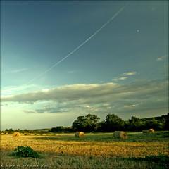 Balas de Paja (m@tr) Tags: france rural canon sigma campo canoneos400ddigital balasdepaja mtr sigma1020mmexdc marcovianna imagenesdefrancia saintchristollsals