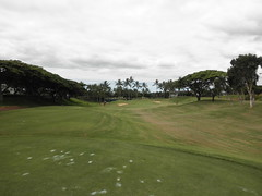 WAIKELE COUNTRY CLUB 168