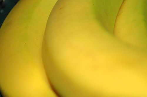 Day 258: Yellow Submarine